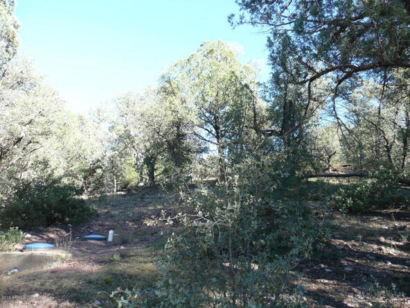 8b N. Chamberlain Trail, Young, AZ 85554 Photo 24