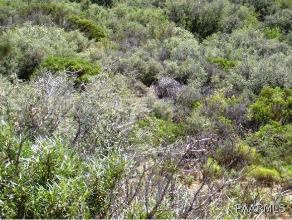 12991 E. Oak Hills Trail, Mayer, AZ 86333 Photo 16