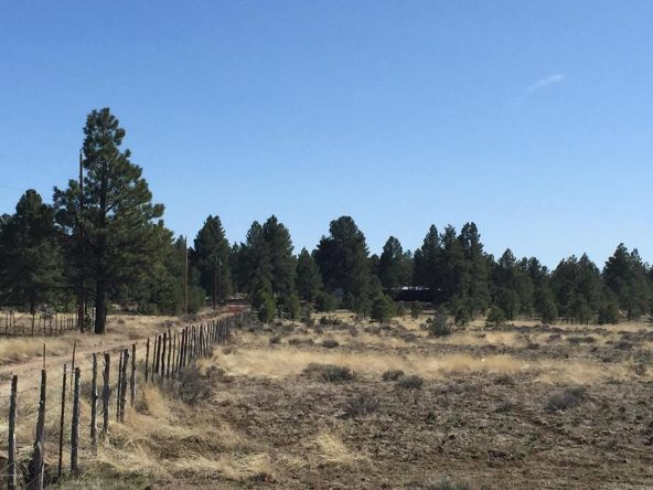 3602 E. Mountain Man Trail, Williams, AZ 86046 Photo 34