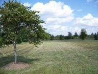 Home for sale: 920 Prairie View Dr., Somonauk, IL 60552