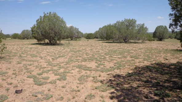 261 Juniperwood Ranch Lot 261, Ash Fork, AZ 86320 Photo 9