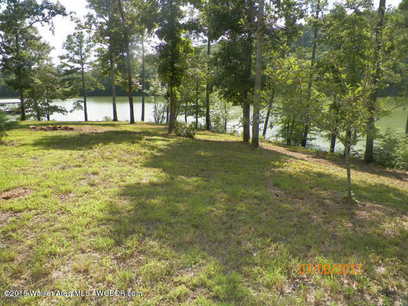 1202 Forest Service Rd., Arley, AL 35541 Photo 10