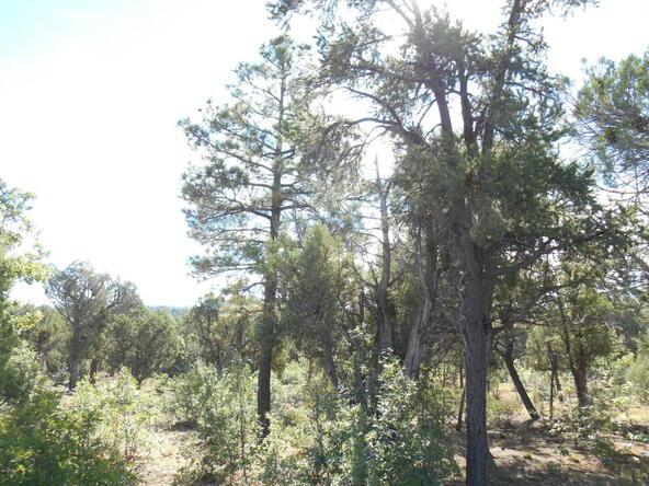 1821 S. Ridge Crest Dr., Show Low, AZ 85901 Photo 5