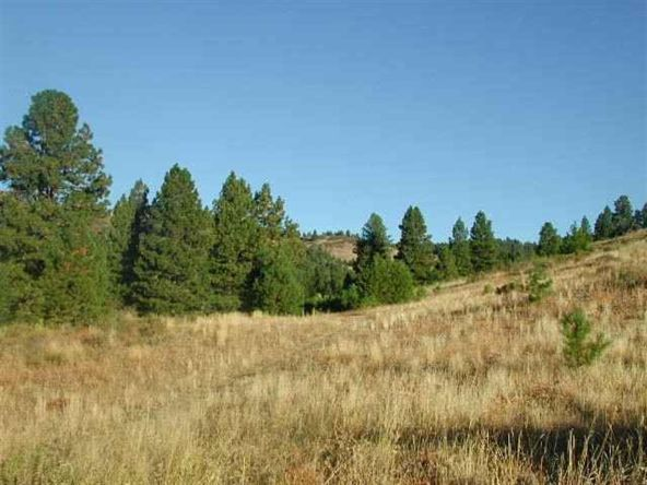 Lot 110 Gold Fork Ridge Rd., Boise, ID 83716 Photo 1