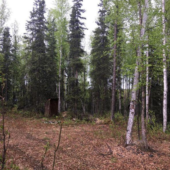 21313 W. Loc Lohmand Dr., Big Lake, AK 99654 Photo 15