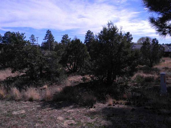 5433 E. S. Elk Springs, Lakeside, AZ 85929 Photo 1