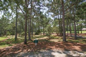 3416 Ravenwood Dr., Miramar Beach, FL 32550 Photo 2