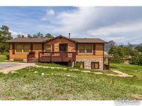 Home for sale: 1060 Otis Ln., Estes Park, CO 80517