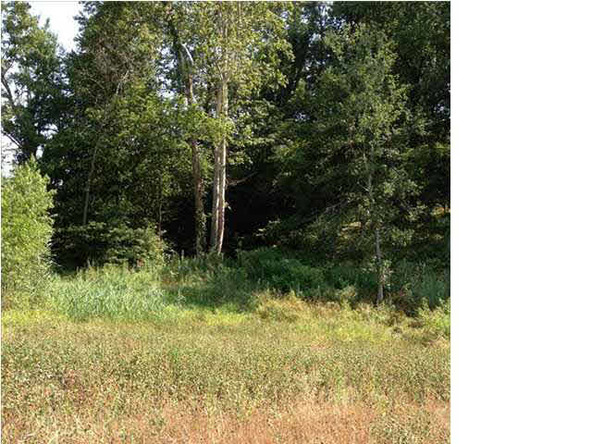 5980 Serenity Dr. Lot 5, Mount Vernon, IN 47620 Photo 20