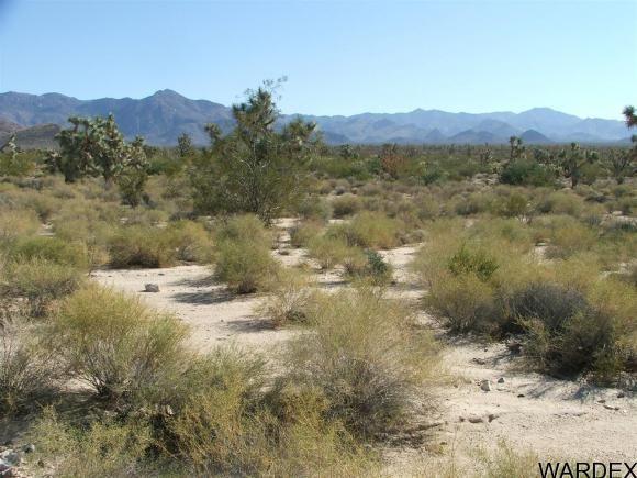1752 E. Boriana Mine Rd., Yucca, AZ 86438 Photo 13