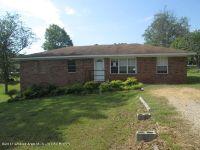 Home for sale: 371 8th Ave., Vernon, AL 35592