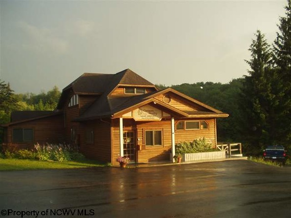 96 Frostline Ct., Davis, WV 26260 Photo 43