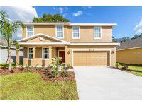 Home for sale: 6815 Altier Estates Ct., Tampa, FL 33610