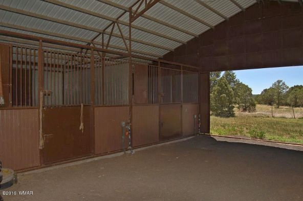 481 Apache County Rd. 3144, Vernon, AZ 85940 Photo 21