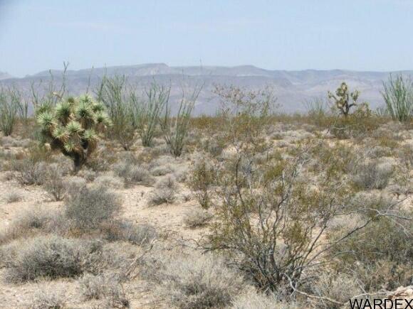 3054/58 Dateland Rd., Yucca, AZ 86438 Photo 14