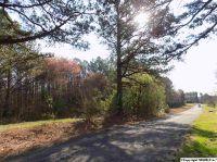 Home for sale: 0 Milligan Rd., Falkville, AL 35622