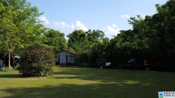 425 College St., Roanoke, AL 36274 Photo 21