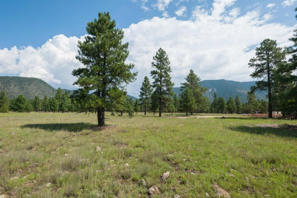 8r Lockett Ranches, Flagstaff, AZ 86001 Photo 13
