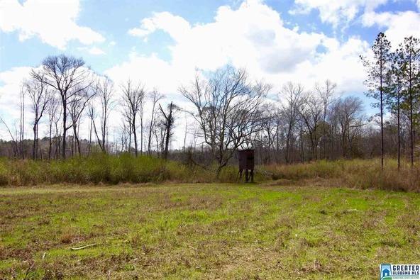 2353 Stallings Rd., Centreville, AL 35042 Photo 38