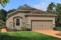 Home for sale: 12302 Barn Cat Run, Odessa, FL 33556
