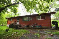 Home for sale: 204 Vine St., Alton, MO 65606