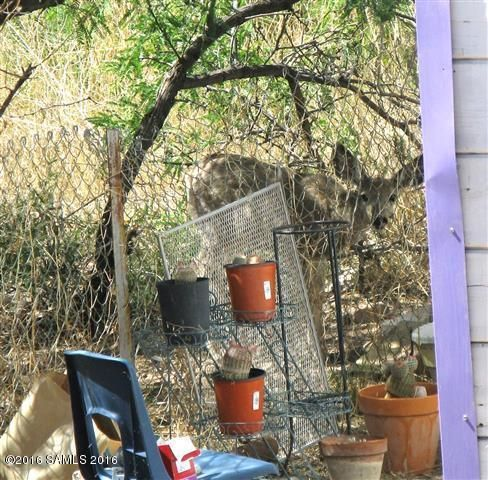 316 B St., Bisbee, AZ 85603 Photo 32