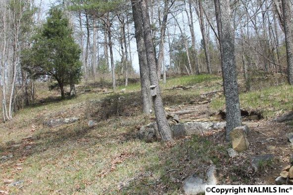 1020 County Rd. 628, Mentone, AL 35984 Photo 29
