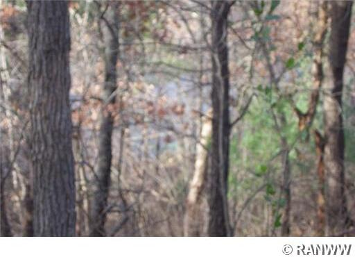Lot 2 579th St., Menomonie, WI 54751 Photo 8