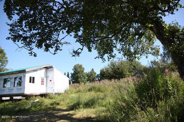 16930 Dilligara Ln., Clam Gulch, AK 99568 Photo 45