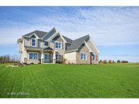 Home for sale: 4715 Laughton Avenue, Oswego, IL 60543