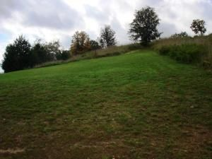 Lot 50 L 50 Whitetail Dr., Walnut Shade, MO 65771 Photo 9