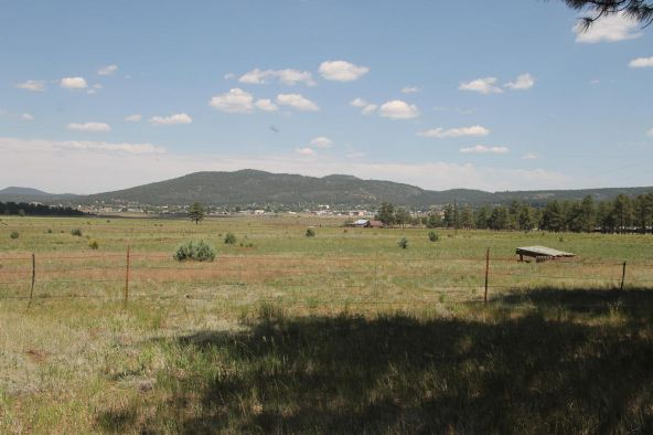 581 Cooper Ranch Rd., Williams, AZ 86046 Photo 20