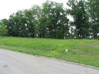 Home for sale: Lot 06 Lakebend Ln., Dandridge, TN 37725
