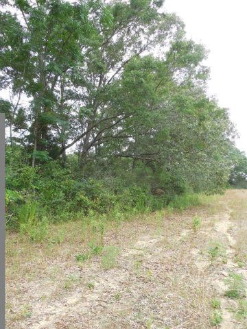 7.8acres Hardy Rd., Rehobeth, AL 36301 Photo 8
