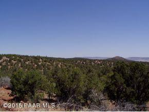 1024 Sierra Verde Ranch, Seligman, AZ 86337 Photo 12
