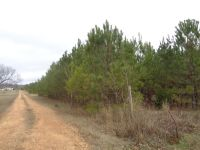 Home for sale: Adams Rd., Columbus, MS 39702