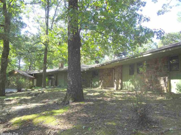 161 Sugartree Ln., Mena, AR 71953 Photo 4