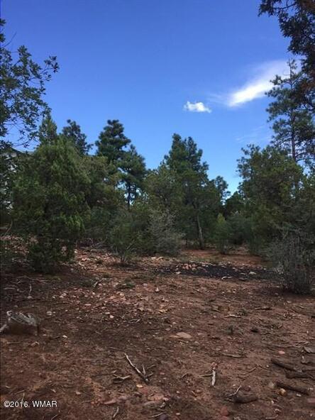 800 E. Pine Oaks Dr., Show Low, AZ 85901 Photo 11