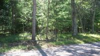 Home for sale: Lawrence Rd., Pound, WI 54161