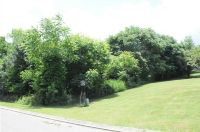 Home for sale: Lot 8 Millstone Dr., Dayton, TN 37321