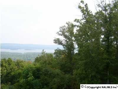3 Mountain Heights Ridge Rd., Scottsboro, AL 35769 Photo 1