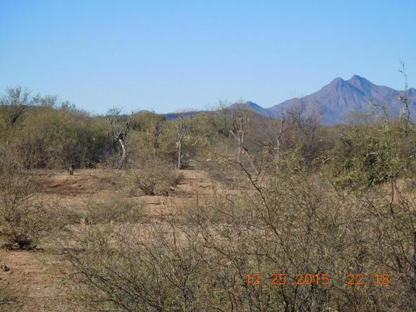 11285 N. Musket, Marana, AZ 85653 Photo 13