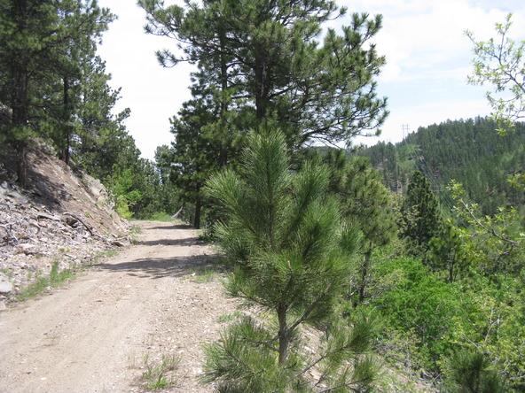 Cutting Mine Rd., Lead, SD 57754 Photo 32
