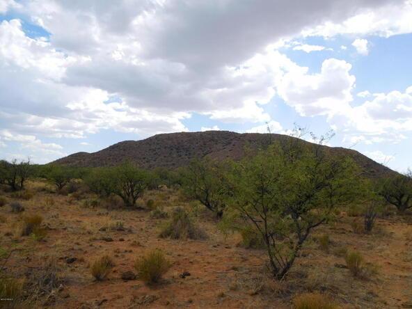 16705 S. Sierrita Mountain, Tucson, AZ 85736 Photo 21
