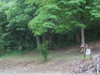 Home for sale: 000 Holly Ln., Kuttawa, KY 42055
