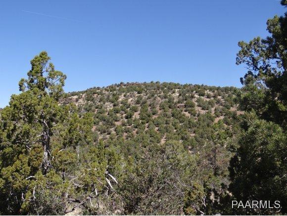 808 Sierra Verde Ranch, Seligman, AZ 86337 Photo 11