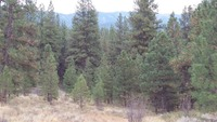 Home for sale: Lot 17 Tbd Meadow Dr., Idaho City, ID 83631