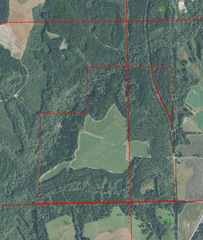 1 County Rd. 377, Opp, AL 36467 Photo 5