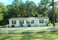 Home for sale: Jim Rish, Wewahitchka, FL 32465