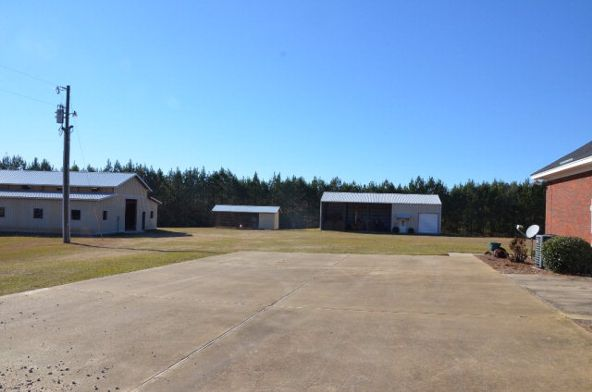 1365 County Rd. 104, Brundidge, AL 36010 Photo 12